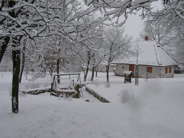 Tél az oszkói szőlőhegyen_2015. február